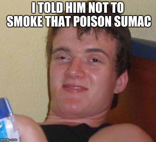 10 Guy Meme | I TOLD HIM NOT TO SMOKE THAT POISON SUMAC | image tagged in memes,10 guy | made w/ Imgflip meme maker