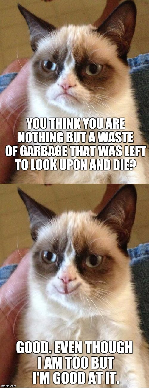 depressing meme week #2 - Ever heard of waste of space or a waste of time? I know, I did a typo a little but you might know. ;') | YOU THINK YOU ARE NOTHING BUT A WASTE OF GARBAGE THAT WAS LEFT TO LOOK UPON AND DIE? GOOD. EVEN THOUGH I AM TOO BUT I'M GOOD AT IT. | image tagged in grumpy cat 2x smile,depressing meme week,match,waste of garbage,grumpy cat | made w/ Imgflip meme maker