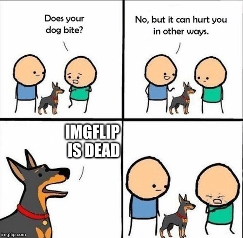 does your dog bite | IMGFLIP IS DEAD | image tagged in does your dog bite | made w/ Imgflip meme maker