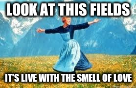 LOOK AT THIS FIELDS IT'S LIVE WITH THE SMELL OF LOVE | made w/ Imgflip meme maker