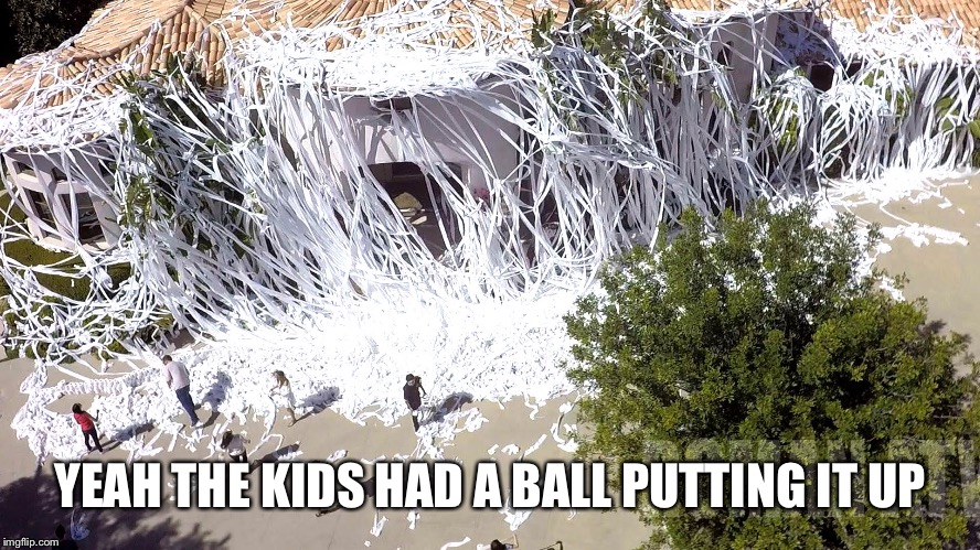 YEAH THE KIDS HAD A BALL PUTTING IT UP | made w/ Imgflip meme maker