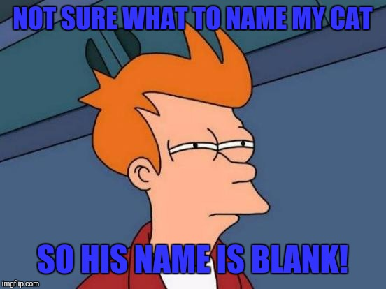 Futurama Fry Meme | NOT SURE WHAT TO NAME MY CAT SO HIS NAME IS BLANK! | image tagged in memes,futurama fry | made w/ Imgflip meme maker