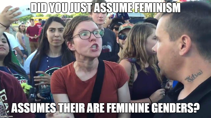 DID YOU JUST ASSUME FEMINISM ASSUMES THEIR ARE FEMININE GENDERS? | image tagged in sjw lightbulb | made w/ Imgflip meme maker