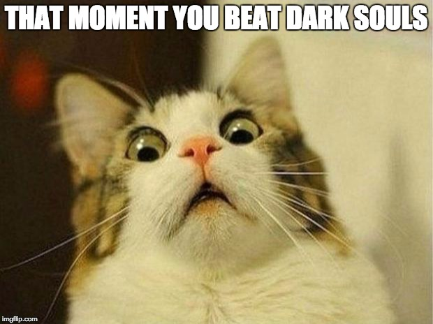 Scared Cat Meme | THAT MOMENT YOU BEAT DARK SOULS | image tagged in memes,scared cat | made w/ Imgflip meme maker