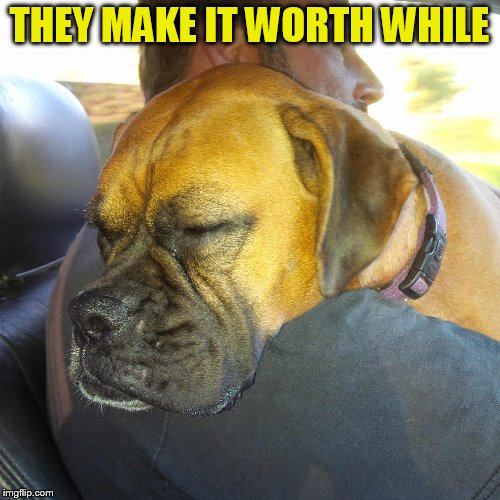 THEY MAKE IT WORTH WHILE | made w/ Imgflip meme maker
