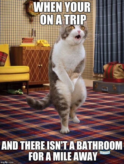Gotta Go Cat Meme | WHEN YOUR ON A TRIP AND THERE ISN'T A BATHROOM FOR A MILE AWAY | image tagged in memes,gotta go cat | made w/ Imgflip meme maker