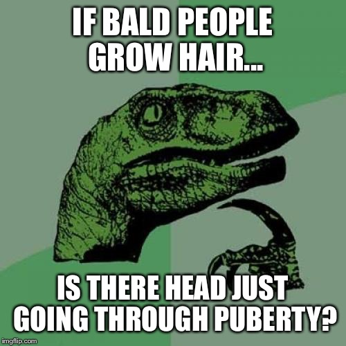 Philosoraptor Meme | IF BALD PEOPLE GROW HAIR... IS THERE HEAD JUST GOING THROUGH PUBERTY? | image tagged in memes,philosoraptor | made w/ Imgflip meme maker