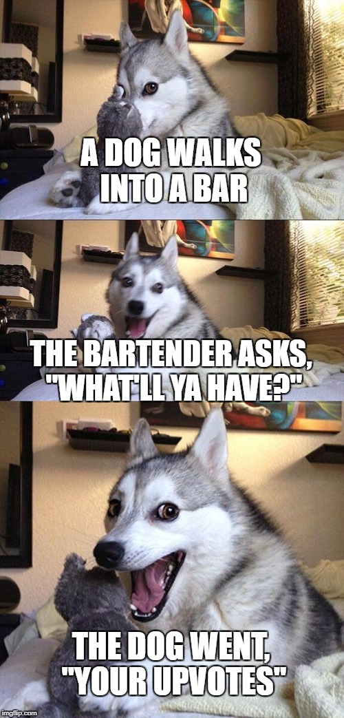 "Bad Pun Dog Meme | A DOG WALKS INTO A BAR THE BARTENDER ASKS, ""WHAT'LL YA HAVE?"" THE DOG WENT, ""YOUR UPVOTES"" 