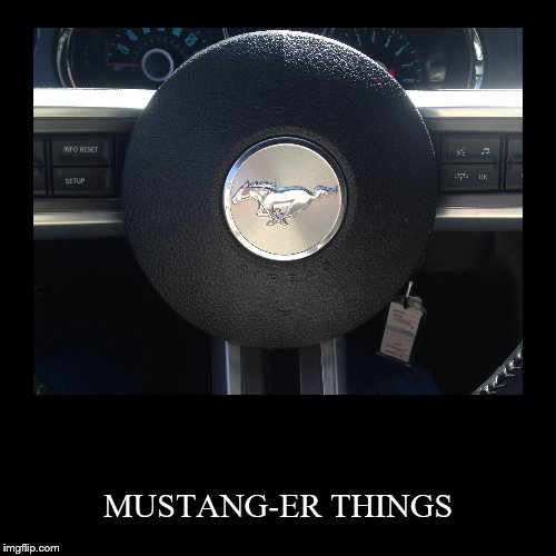 MUSTANG-ER THINGS | image tagged in funny,demotivationals | made w/ Imgflip demotivational maker
