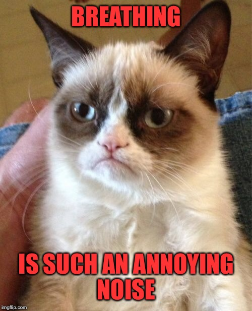 Grumpy Cat Meme | BREATHING IS SUCH AN ANNOYING NOISE | image tagged in memes,grumpy cat | made w/ Imgflip meme maker