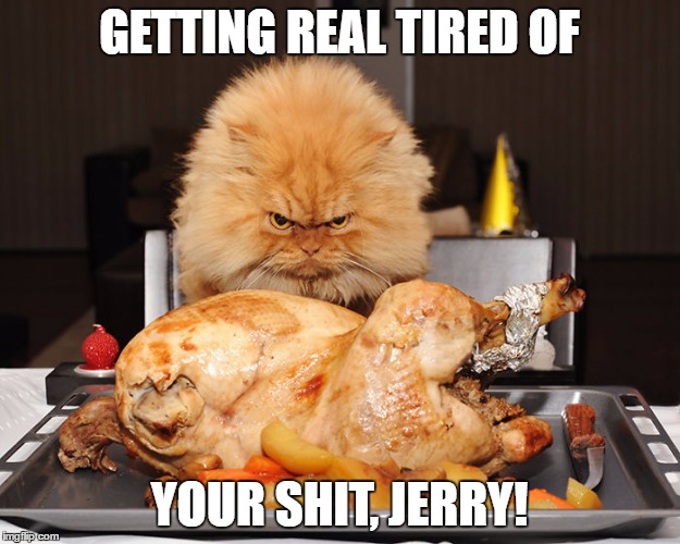 GETTING REAL TIRED OF YOUR SHIT, JERRY! | image tagged in memes in real life | made w/ Imgflip meme maker
