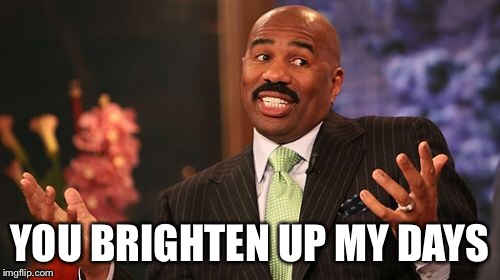 Steve Harvey Meme | YOU BRIGHTEN UP MY DAYS | image tagged in memes,steve harvey | made w/ Imgflip meme maker
