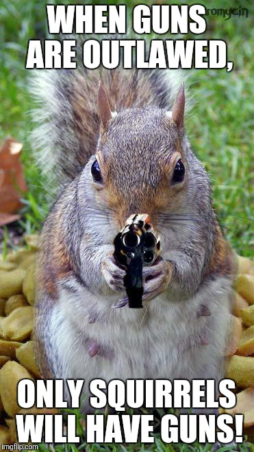 funny squirrels with guns (5) | WHEN GUNS ARE OUTLAWED, ONLY SQUIRRELS WILL HAVE GUNS! | image tagged in funny squirrels with guns 5 | made w/ Imgflip meme maker