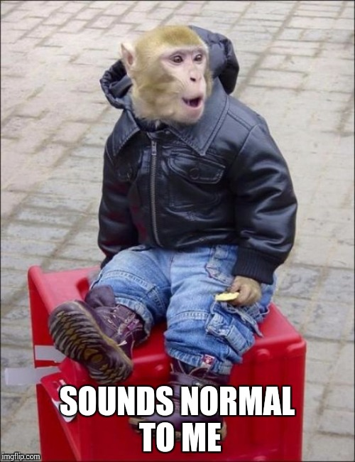 SOUNDS NORMAL TO ME | made w/ Imgflip meme maker