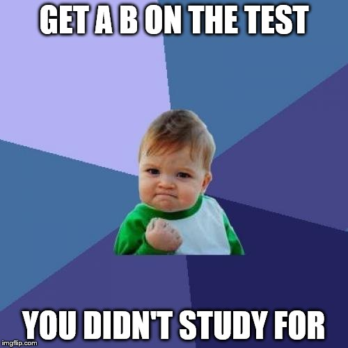 Success Kid Meme | GET A B ON THE TEST YOU DIDN'T STUDY FOR | image tagged in memes,success kid | made w/ Imgflip meme maker