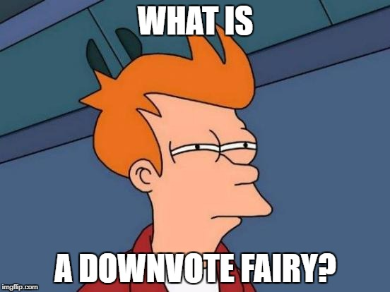 Futurama Fry Meme | WHAT IS A DOWNVOTE FAIRY? | image tagged in memes,futurama fry | made w/ Imgflip meme maker