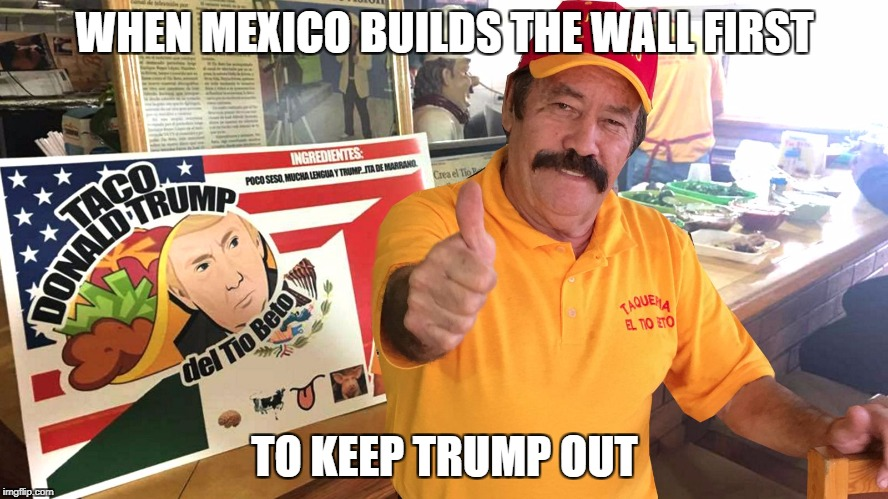 WHEN MEXICO BUILDS THE WALL FIRST TO KEEP TRUMP OUT | image tagged in fox | made w/ Imgflip meme maker