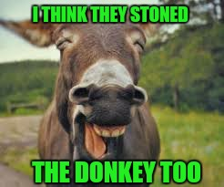 I THINK THEY STONED THE DONKEY TOO | made w/ Imgflip meme maker