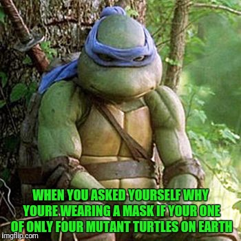 Sad Ninja Turtle | WHEN YOU ASKED YOURSELF WHY YOURE WEARING A MASK IF YOUR ONE OF ONLY FOUR MUTANT TURTLES ON EARTH | image tagged in sad ninja turtle | made w/ Imgflip meme maker