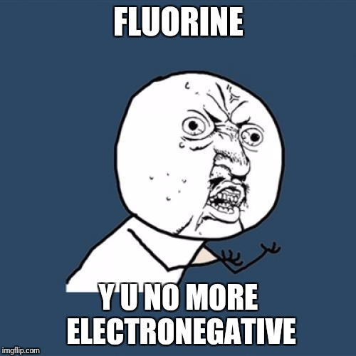 Y U No Meme | FLUORINE Y U NO MORE ELECTRONEGATIVE | image tagged in memes,y u no | made w/ Imgflip meme maker