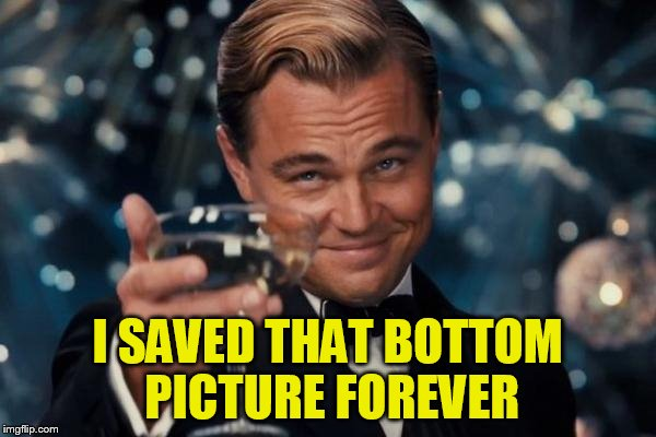 Leonardo Dicaprio Cheers Meme | I SAVED THAT BOTTOM PICTURE FOREVER | image tagged in memes,leonardo dicaprio cheers | made w/ Imgflip meme maker