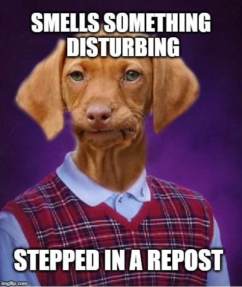 Bad Luck Raydog | SMELLS SOMETHING DISTURBING STEPPED IN A REPOST | image tagged in bad luck raydog,repost,bad luck brian,dog poop | made w/ Imgflip meme maker
