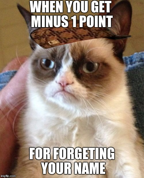 Grumpy Cat Meme | WHEN YOU GET MINUS 1 POINT FOR FORGETING YOUR NAME | image tagged in memes,grumpy cat,scumbag | made w/ Imgflip meme maker