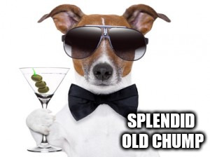 SPLENDID OLD CHUMP | made w/ Imgflip meme maker