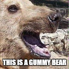 THIS IS A GUMMY BEAR | made w/ Imgflip meme maker