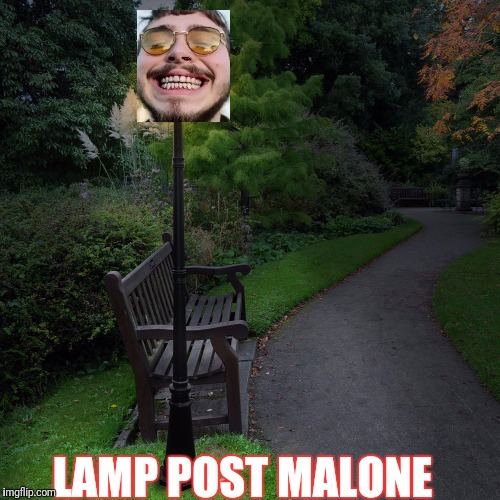 LAMP POST MALONE | image tagged in celebrities,funny | made w/ Imgflip meme maker