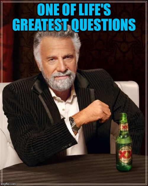 The Most Interesting Man In The World Meme | ONE OF LIFE'S GREATEST QUESTIONS | image tagged in memes,the most interesting man in the world | made w/ Imgflip meme maker