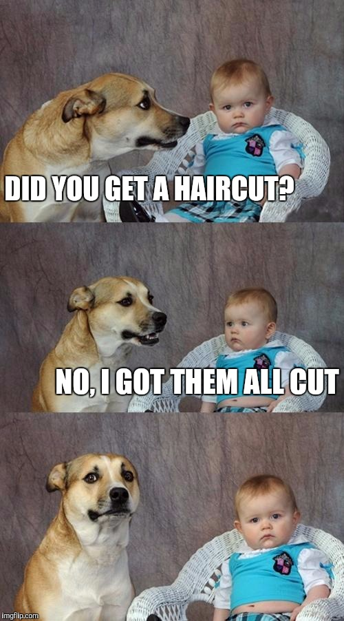 Dad Joke Dog Meme | DID YOU GET A HAIRCUT? NO, I GOT THEM ALL CUT | image tagged in memes,dad joke dog | made w/ Imgflip meme maker