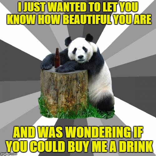 Pickup Line Panda | I JUST WANTED TO LET YOU KNOW HOW BEAUTIFUL YOU ARE AND WAS WONDERING IF YOU COULD BUY ME A DRINK | image tagged in memes,pickup line panda | made w/ Imgflip meme maker