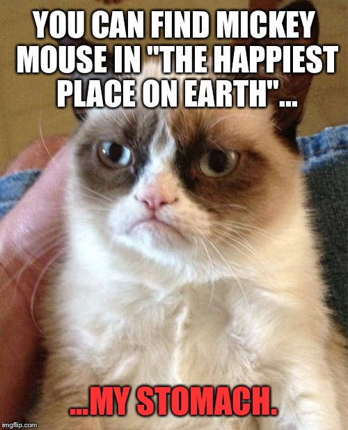 "Grumpy Cat ate Mickey Mouse | YOU CAN FIND MICKEY MOUSE IN ""THE HAPPIEST PLACE ON EARTH""... ...MY STOMACH. 