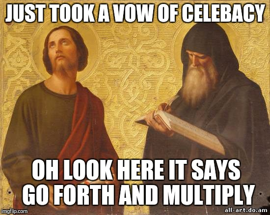 Awkward moment in a monastery | JUST TOOK A VOW OF CELEBACY OH LOOK HERE IT SAYS GO FORTH AND MULTIPLY | image tagged in bored,religious | made w/ Imgflip meme maker