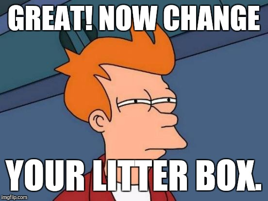 Futurama Fry Meme | GREAT! NOW CHANGE YOUR LITTER BOX. | image tagged in memes,futurama fry | made w/ Imgflip meme maker