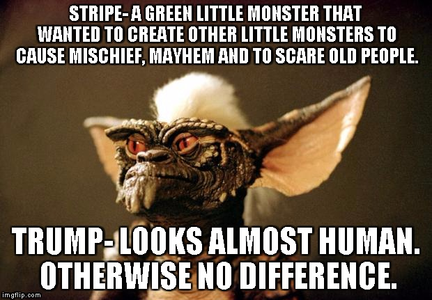 STRIPE- A GREEN LITTLE MONSTER THAT WANTED TO CREATE OTHER LITTLE MONSTERS TO CAUSE MISCHIEF, MAYHEM AND TO SCARE OLD PEOPLE. TRUMP- LOOKS A | image tagged in gremlins | made w/ Imgflip meme maker