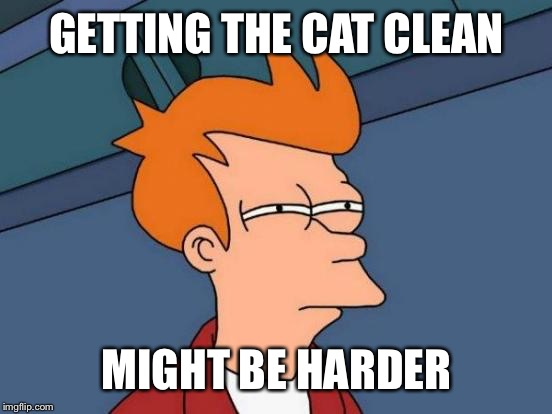 Futurama Fry Meme | GETTING THE CAT CLEAN MIGHT BE HARDER | image tagged in memes,futurama fry | made w/ Imgflip meme maker