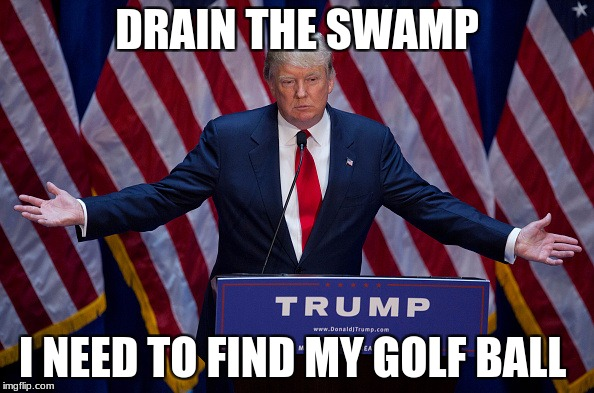 Donald Trump | DRAIN THE SWAMP I NEED TO FIND MY GOLF BALL | image tagged in donald trump | made w/ Imgflip meme maker