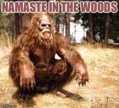 bigfoot | NAMASTE IN THE WOODS | image tagged in bigfoot | made w/ Imgflip meme maker