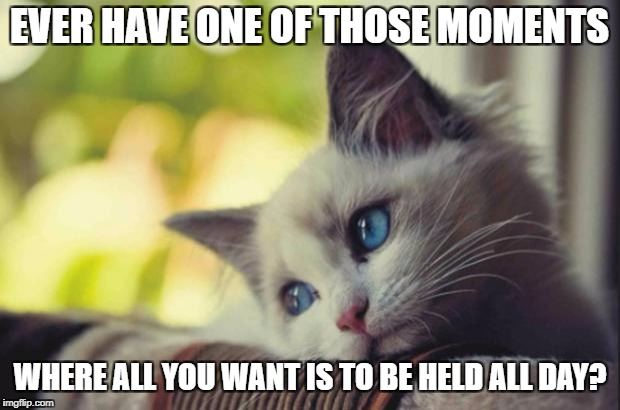 Sad cat | EVER HAVE ONE OF THOSE MOMENTS WHERE ALL YOU WANT IS TO BE HELD ALL DAY? | image tagged in sad cat | made w/ Imgflip meme maker