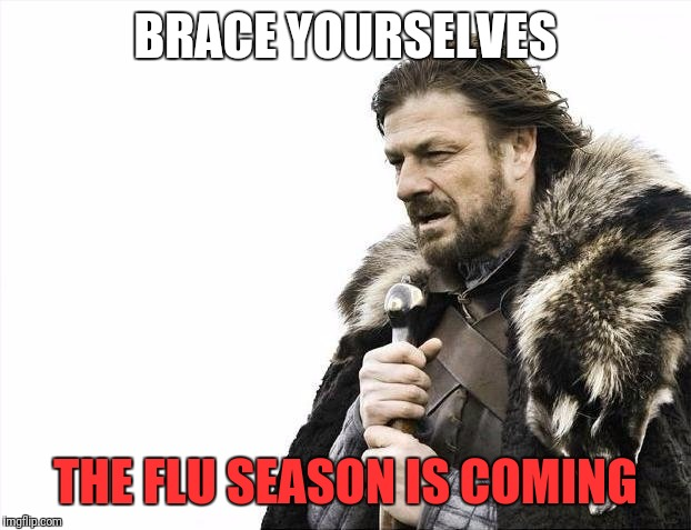 Brace Yourselves X is Coming Meme | BRACE YOURSELVES THE FLU SEASON IS COMING | image tagged in memes,brace yourselves x is coming | made w/ Imgflip meme maker