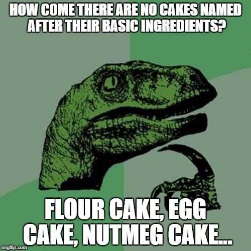 Philosoraptor Meme | HOW COME THERE ARE NO CAKES NAMED AFTER THEIR BASIC INGREDIENTS? FLOUR CAKE, EGG CAKE, NUTMEG CAKE... | image tagged in memes,philosoraptor | made w/ Imgflip meme maker