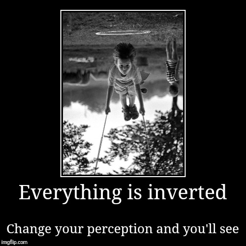 Everything is inverted | Change your perception and you'll see | image tagged in mirrors,perception,opposites,dead or alive | made w/ Imgflip demotivational maker