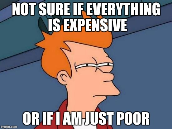 Futurama Fry Meme | NOT SURE IF EVERYTHING IS EXPENSIVE OR IF I AM JUST POOR | image tagged in memes,futurama fry | made w/ Imgflip meme maker