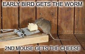 work smarter not harder | EARLY BIRD GETS THE WORM 2ND MOUSE GETS THE CHEESE | image tagged in mouse trap,meme | made w/ Imgflip meme maker