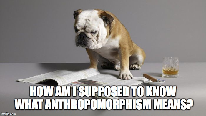 Just like one of us | HOW AM I SUPPOSED TO KNOW WHAT ANTHROPOMORPHISM MEANS? | image tagged in anthropomorphism,personification,dog | made w/ Imgflip meme maker