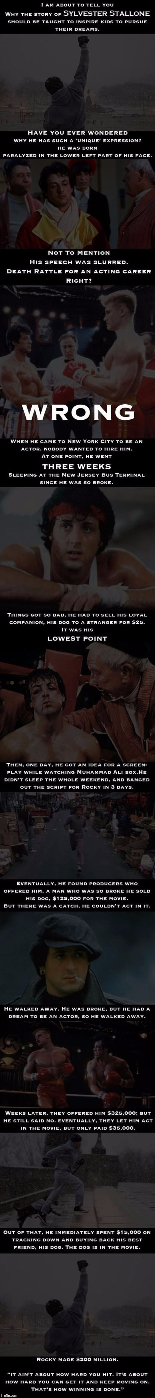 This is too good not to share!  Thanks to DashHopes!  | TOO GOOD NOT TO SHARE! | image tagged in memes,inspirational,dashhopes,sylvester stallone,rocky,follow your dreams | made w/ Imgflip meme maker