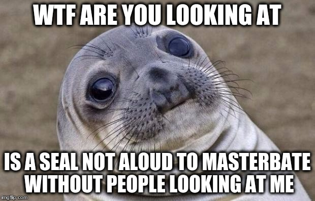 Awkward Moment Sealion Meme | WTF ARE YOU LOOKING AT IS A SEAL NOT ALOUD TO MASTERBATE WITHOUT PEOPLE LOOKING AT ME | image tagged in memes,awkward moment sealion | made w/ Imgflip meme maker