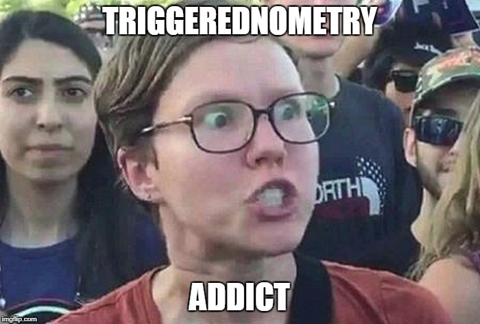 TRIGGEREDNOMETRY ADDICT | made w/ Imgflip meme maker